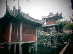 SHANGHAI JARDIN