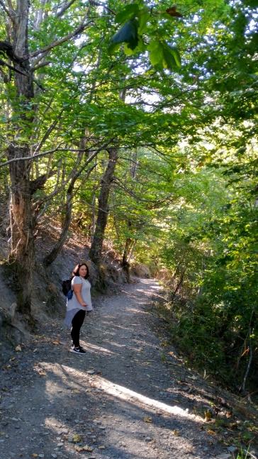 Camino desde la cantina hacia la cueva