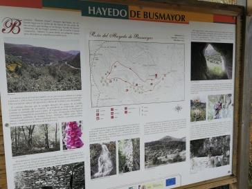 Busmayor , Bierzo , Naturaleza