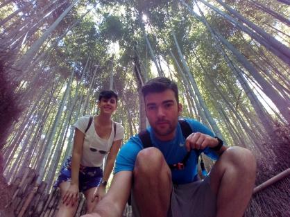 Bamboo Arashiyama